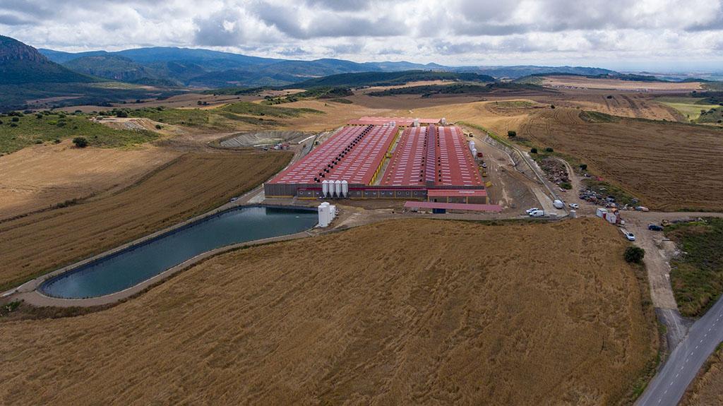 naves-agroindustriales-en-paobal-constructora